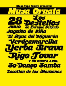 Musa Ornata